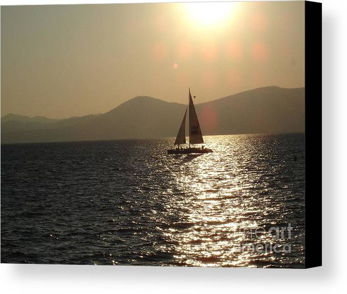 Landscape Canvas Print featuring the photograph Single Sailboat by Silvie Kendall