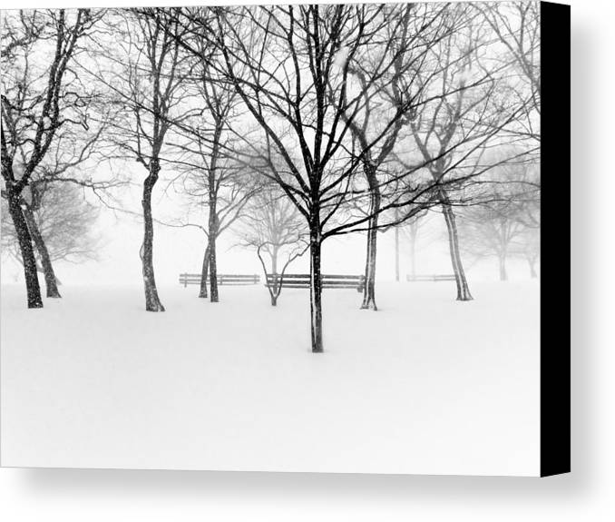 Horizontal Canvas Print featuring the photograph Snowy Trees And Park Benches by Meera Lee Sethi