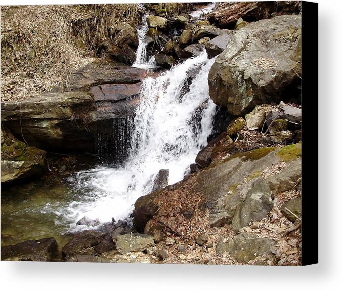 Water Fall Rocks Trees Stream Canvas Print featuring the photograph Stream by Michael Milanak