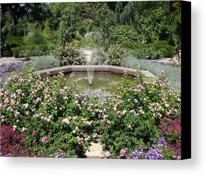 Cleveland Canvas Print featuring the photograph The Rose Garden by S K