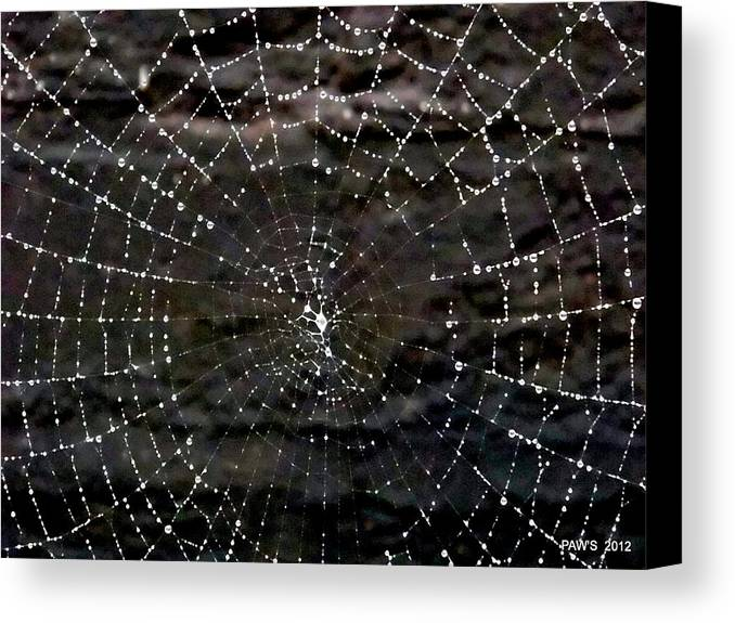 Web Canvas Print featuring the photograph The Web by Peter Waby