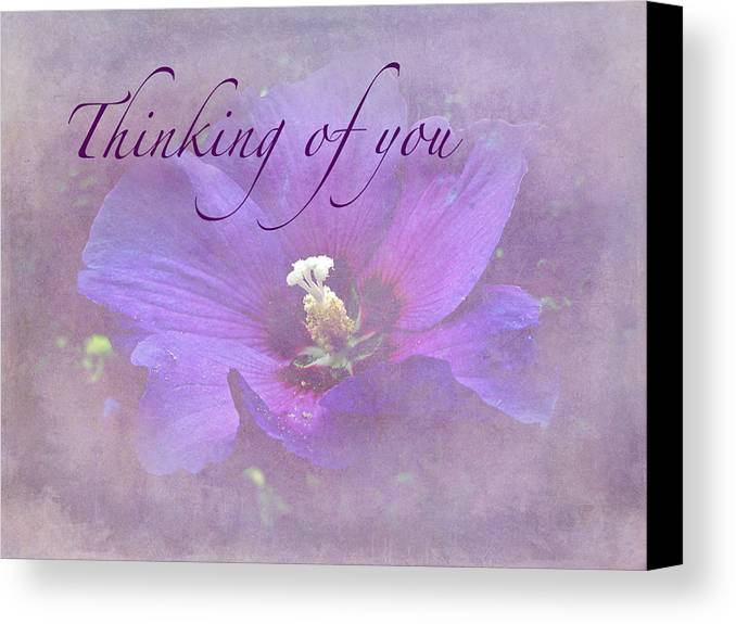 Sympathy Canvas Print featuring the photograph Thinking Of You Greeting Card - Rose Of Sharon by Mother Nature