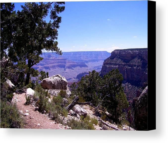 Grand Canyon Canvas Print featuring the photograph Trail To The Canyon by Dany Lison