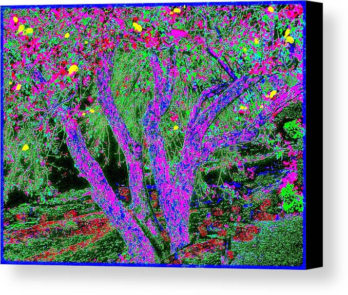 Abstract Landscape Canvas Print featuring the painting 007h Abstract Arcadia Tree by Ed Immar