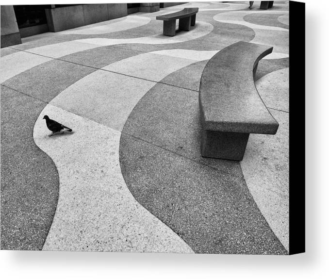 Rockefeller Center Canvas Print featuring the photograph Curves by Cornelis Verwaal