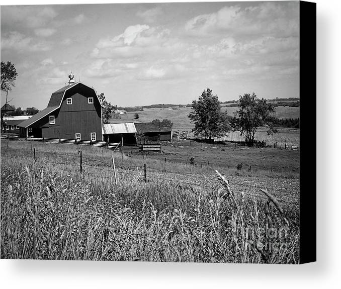 Art Canvas Print featuring the photograph Down On The Farm by Jenness Asby