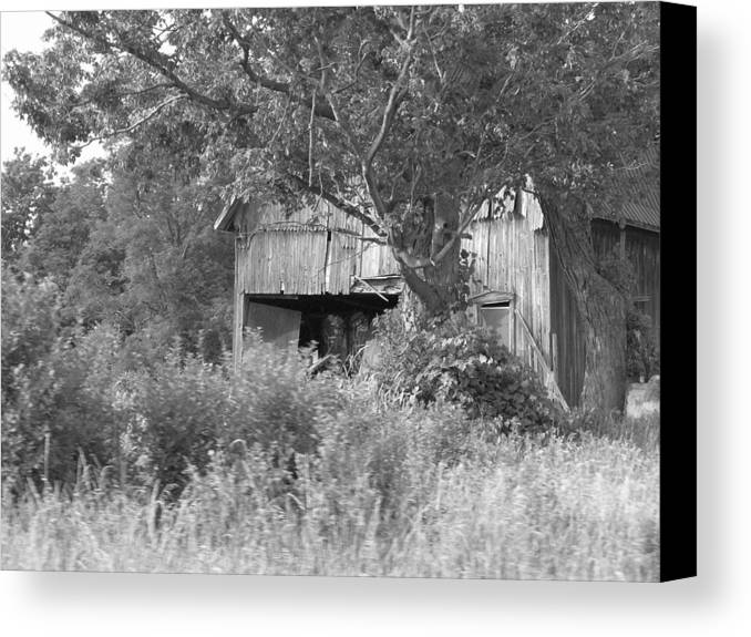 Country Canvas Print featuring the photograph Hidden by Rhonda Barrett
