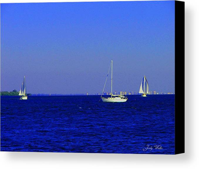 Blue Canvas Print featuring the photograph There Are Three by Judy Waller