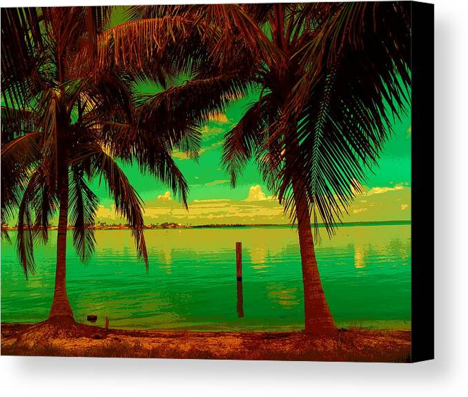 Abstract Canvas Print featuring the photograph Tropic Nite by Florene Welebny