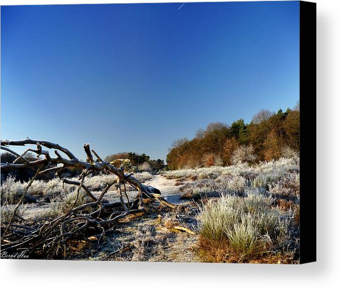 Canvas Print featuring the photograph Beauty Of Nature by Bernd Hau