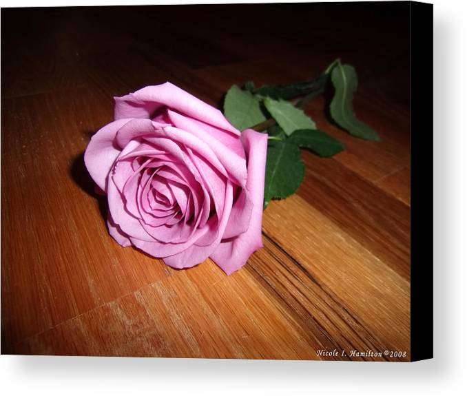 Rose Canvas Print featuring the photograph Accolade by Nicole I Hamilton