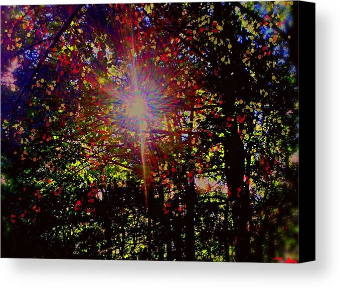 Light Canvas Print featuring the photograph Afternoon Light by Bill Minkowitz