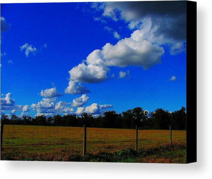 Clouds Canvas Print featuring the photograph All About Clouds by Judy Waller