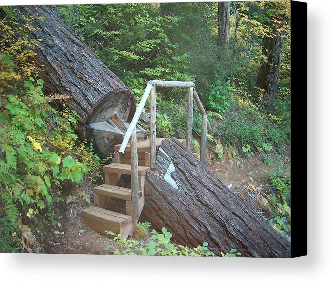 Hiking Trail Bend Oregon Walking Canvas Print featuring the photograph Along The Trail by Janet Hall