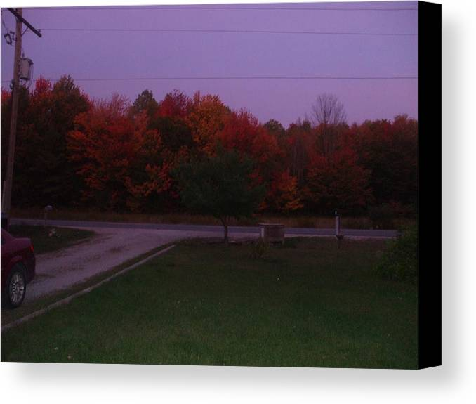 Canvas Print featuring the photograph Autum Glow by Rebecca Fitchett