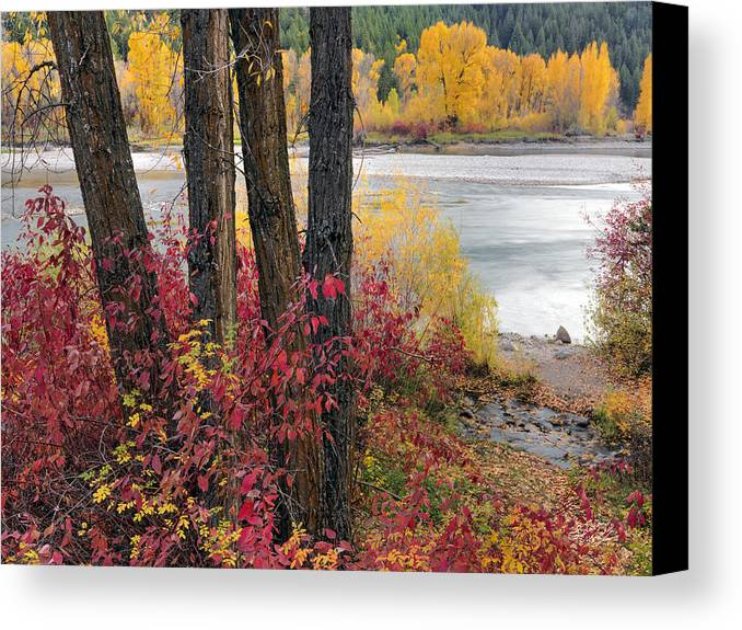 Idaho Scenics Canvas Print featuring the photograph Autumn In East Idaho by Leland D Howard