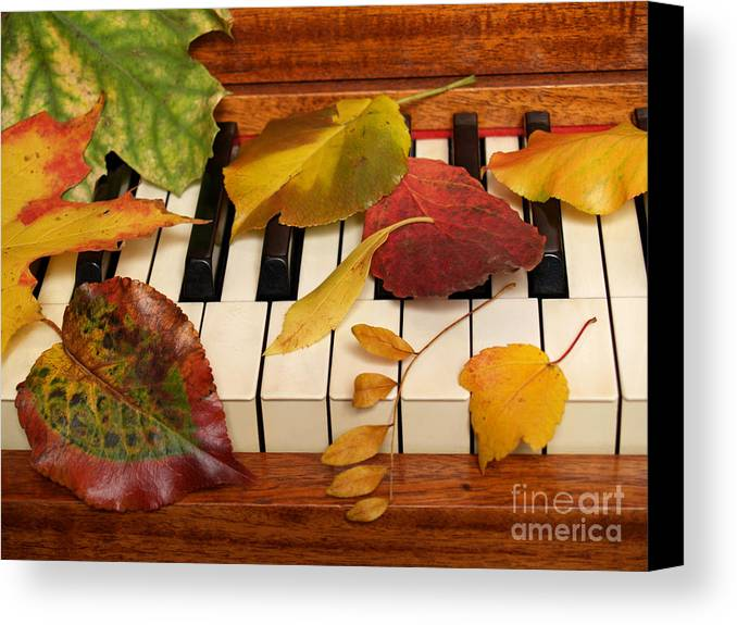 Piano Canvas Print featuring the photograph Autumn Leaves Tickle The Ivories by Anna Lisa Yoder