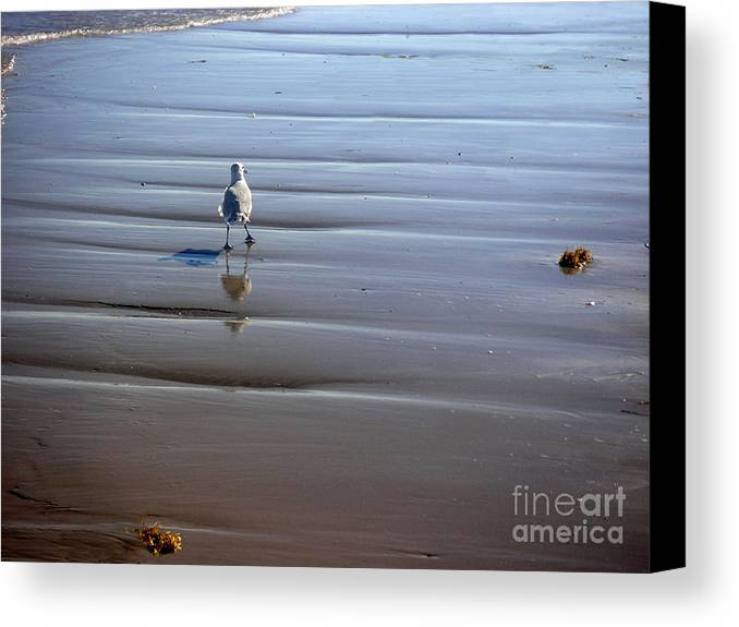 Nature Canvas Print featuring the photograph Being One With The Gulf - Escaping by Lucyna A M Green
