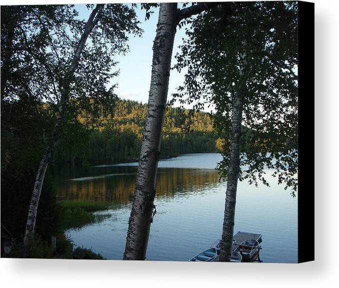 Landscape Canvas Print featuring the photograph Birch Trees Along The Lake by Mary Lynne Crispo