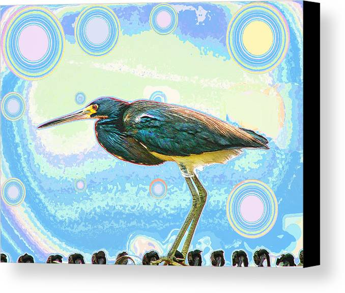Bird Canvas Print featuring the digital art Bird Contemplates The Cosmos by Wendy J St Christopher