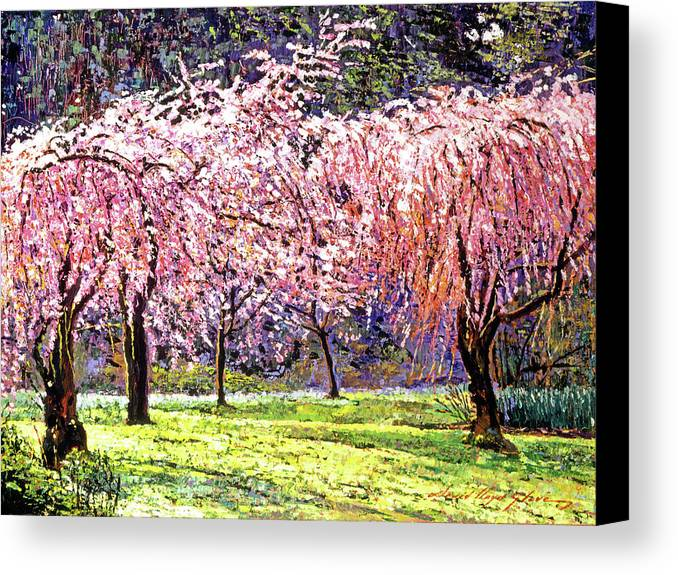 Cherry Blossoms Canvas Print featuring the painting Blossom Fantasy by David Lloyd Glover