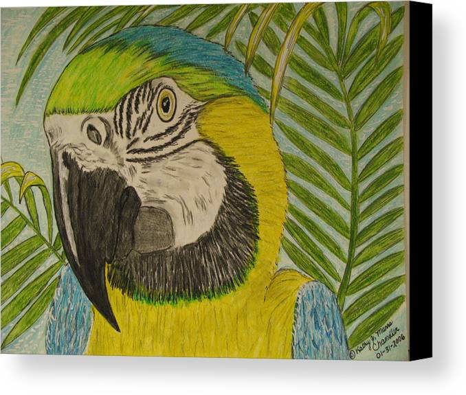 Macaw Canvas Print featuring the painting Blue And Gold Macaw Parrot by Kathy Marrs Chandler