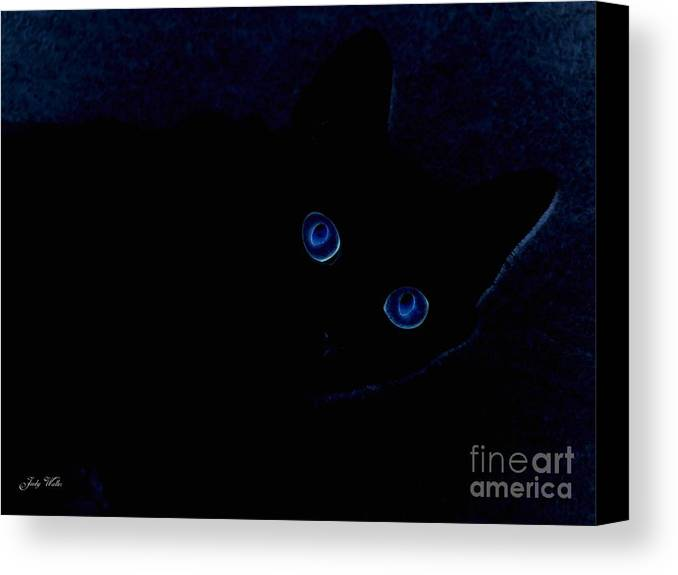 Cat-eyes Canvas Print featuring the photograph Blue Cat Eyes by Judy Waller