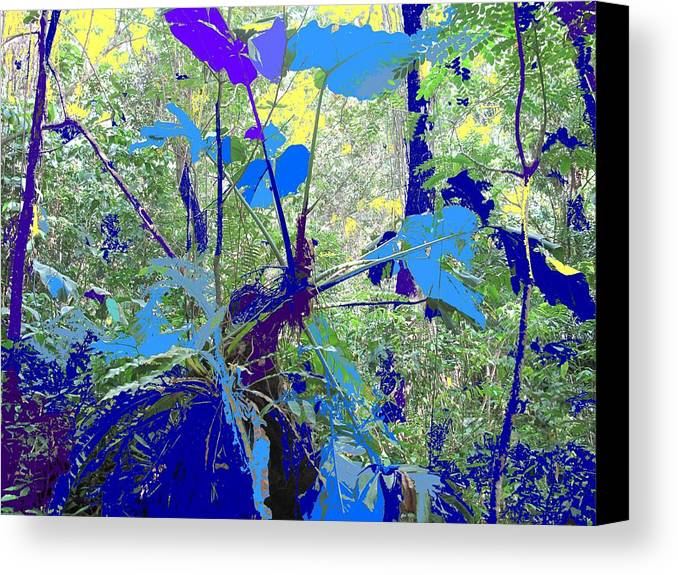 Canvas Print featuring the photograph Blue Jungle by Ian MacDonald
