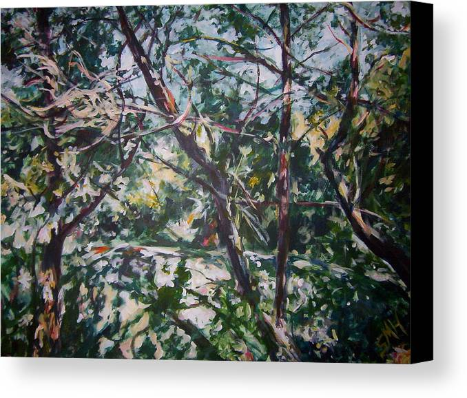 Landscape Canvas Print featuring the painting Branches Of Light by Sheila Holland