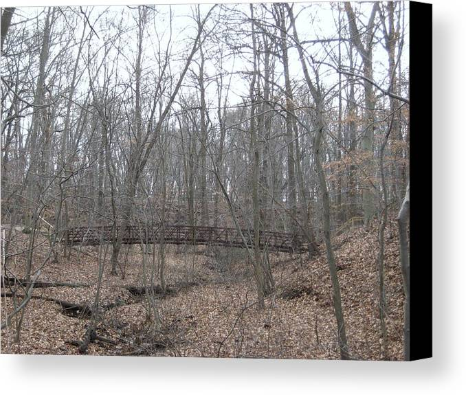 Nature Canvas Print featuring the photograph Bridge Over Stream by Jennifer Sweet