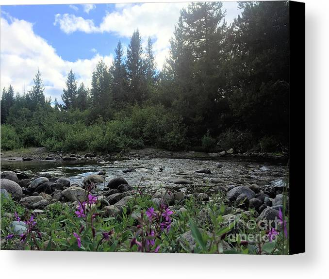 Britton Creek Canvas Print featuring the photograph Somewhere Over The Mountains 2 by Victor K