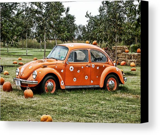 Bug Canvas Print featuring the photograph Bugs In The Patch Again by Scott Wyatt