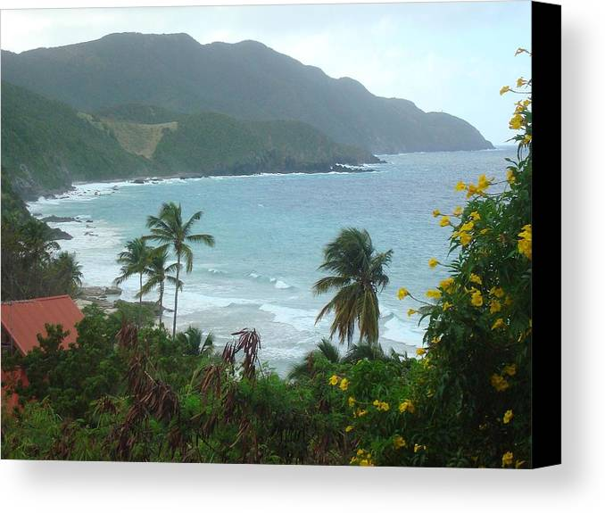 Island Canvas Print featuring the photograph Carambola Photograph Virgin Islands by Anne-Elizabeth Whiteway