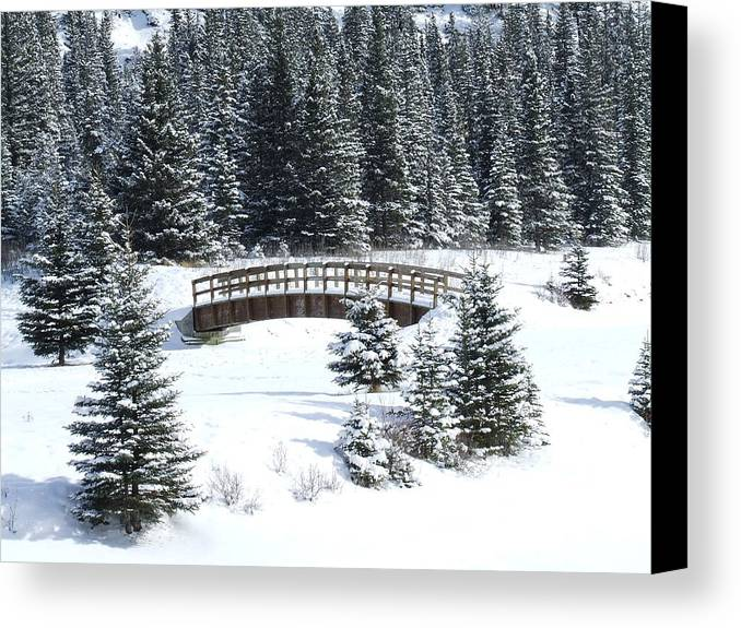 Winter Canvas Print featuring the photograph Cascade Christmas by Tiffany Vest