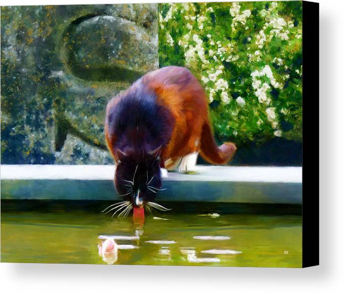 Picturesque Canvas Print featuring the painting Cat Drinking In Picturesque Garden by Menega Sabidussi