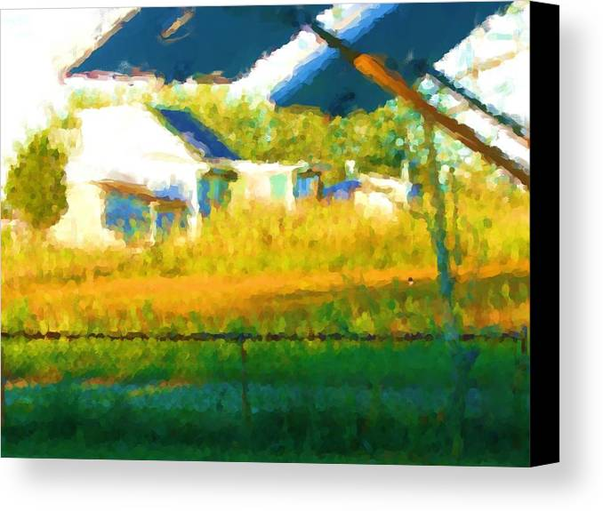Canvas Print featuring the painting Cat In The Grass by Jonathan Galente