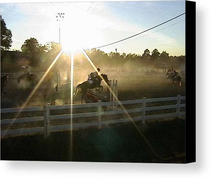 Horse Canvas Print featuring the photograph Catching The Light by Donna Thomas