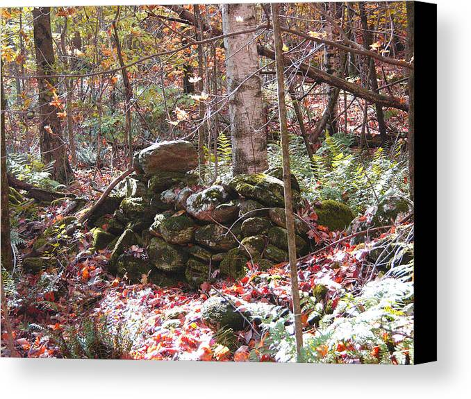 Civilan Cconservation Corps Canvas Print featuring the photograph CCC by Peter Williams