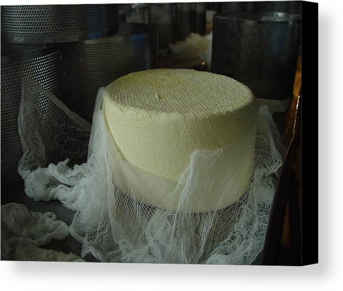 Cheese Canvas Print featuring the photograph Cheese by Eric Workman