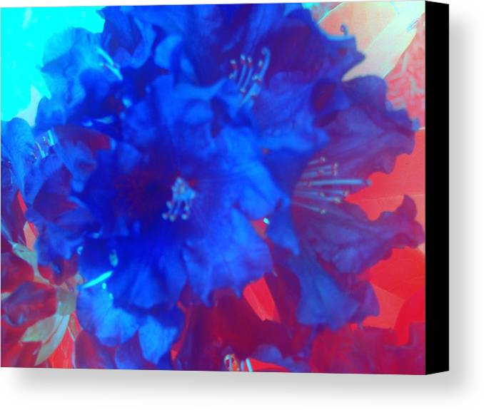 Flowers Canvas Print featuring the photograph Christine's Bouquet by Tiffany Vest