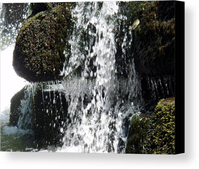 Water Canvas Print featuring the photograph Cocktail Rock by Jessica Breen
