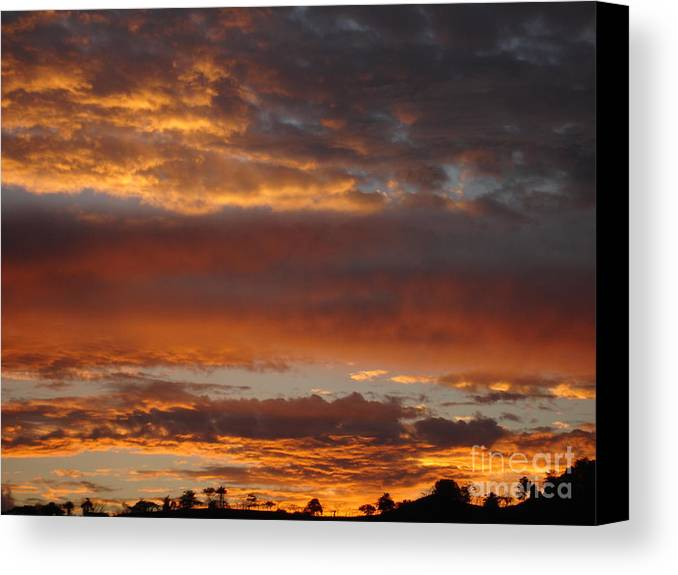 Sunset Canvas Print featuring the photograph Coco Sky by Chad Natti
