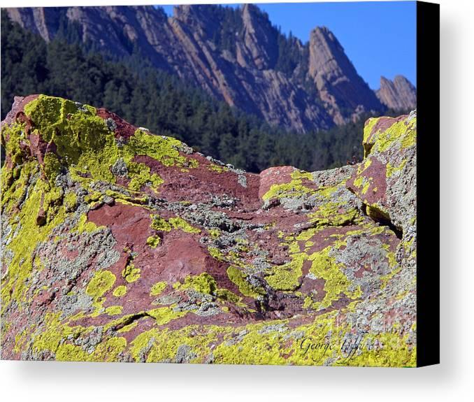 Rock Colorado Boulder Mesa Mesatrail Colorful Lichen Landscape Weatern Canvas Print featuring the photograph Colorful Rock Mesatrail by George Tuffy