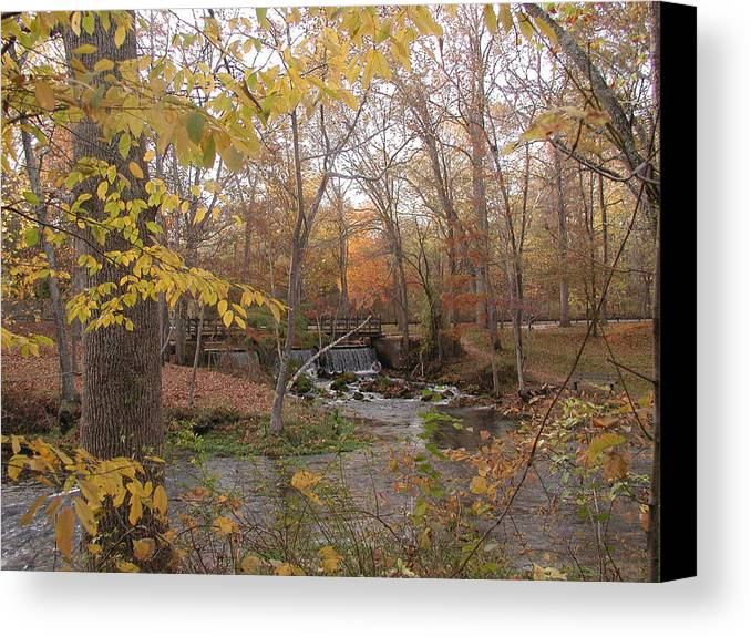 Fall Canvas Print featuring the photograph Colors Flow by Bj Hodges