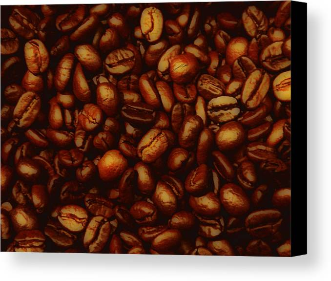 Coffee Canvas Print featuring the photograph Costa Rican Coffee by LoungeMode Productions