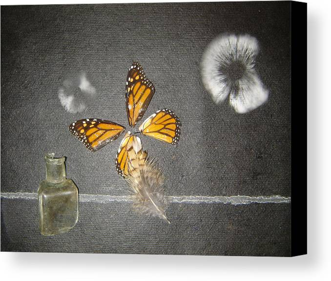Still Life Canvas Print featuring the photograph Cross Wind by Dean Corbin