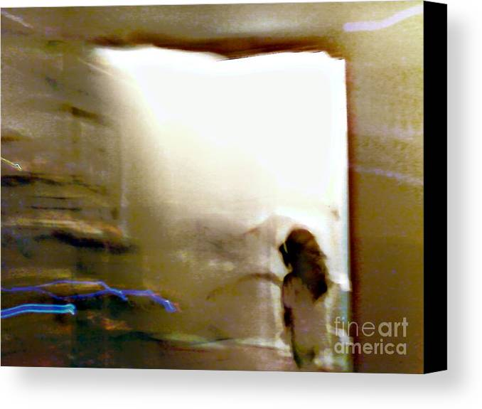Digital Canvas Print featuring the digital art Digital Doorway by Balanced Art