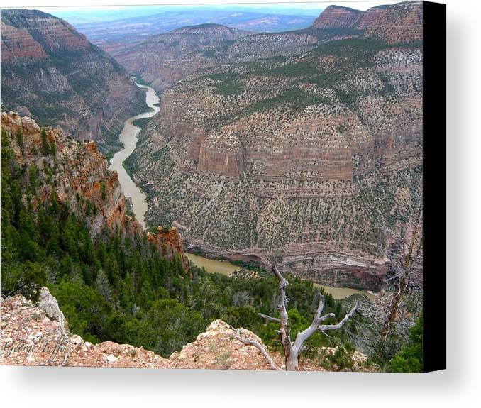 Dinosaur National Monument Colorado Mountains Canyon River Nature Canvas Print featuring the photograph Dinosaur National Monument by George Tuffy