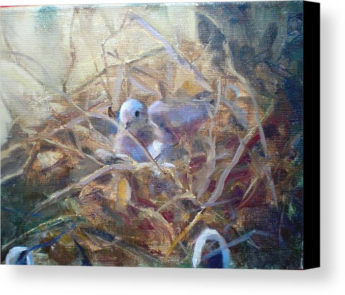 Dove Planter Nest Earth Colors Canvas Print featuring the painting Dove Nesting by Bryan Alexander