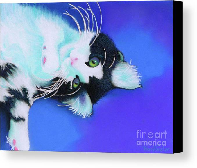 Cat Canvas Print featuring the pastel Dreamer by Tracy L Teeter